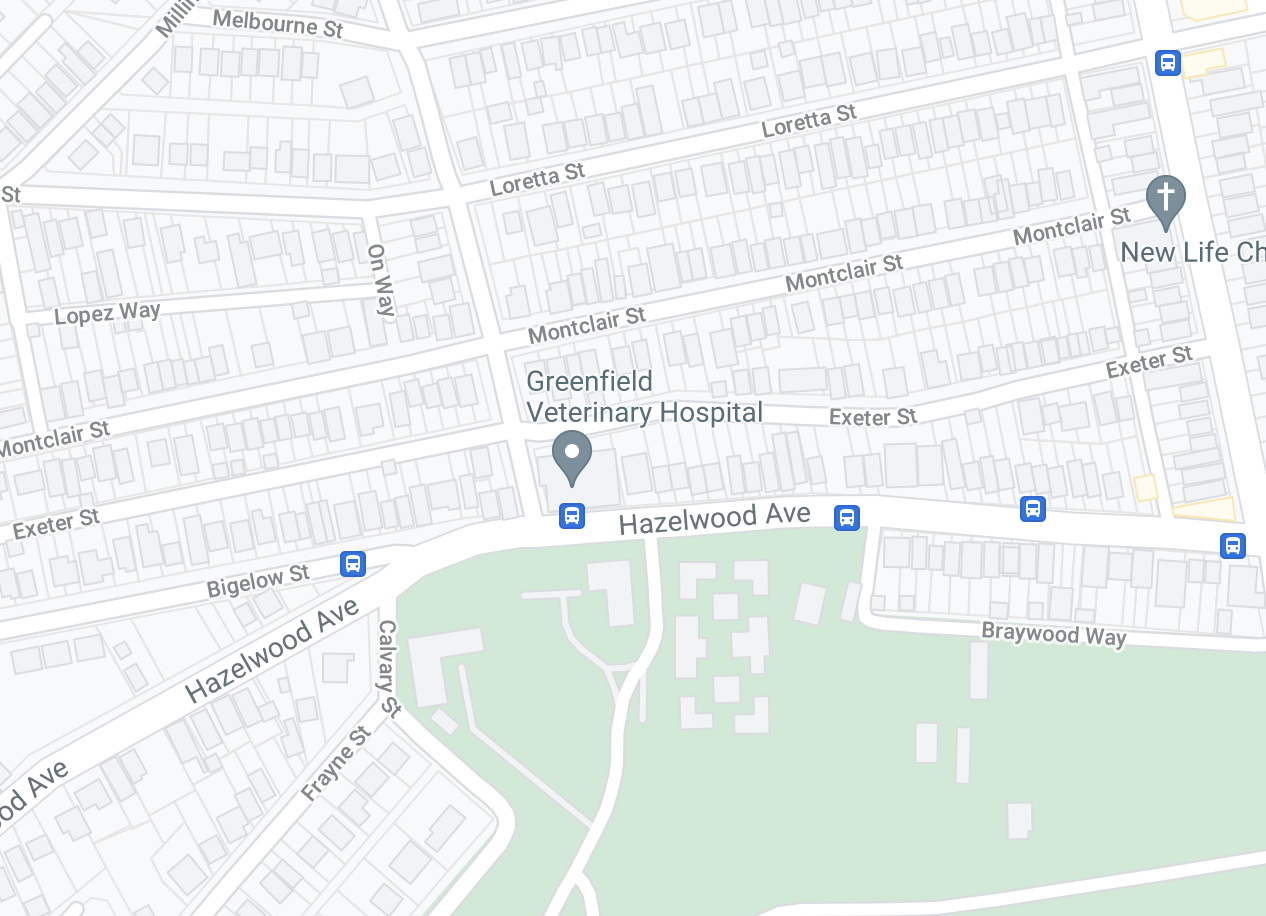 map of greenfield vet location
