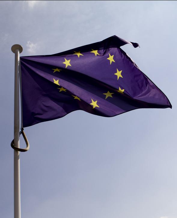 Directive Distribution Assurances et UX 4 piliers