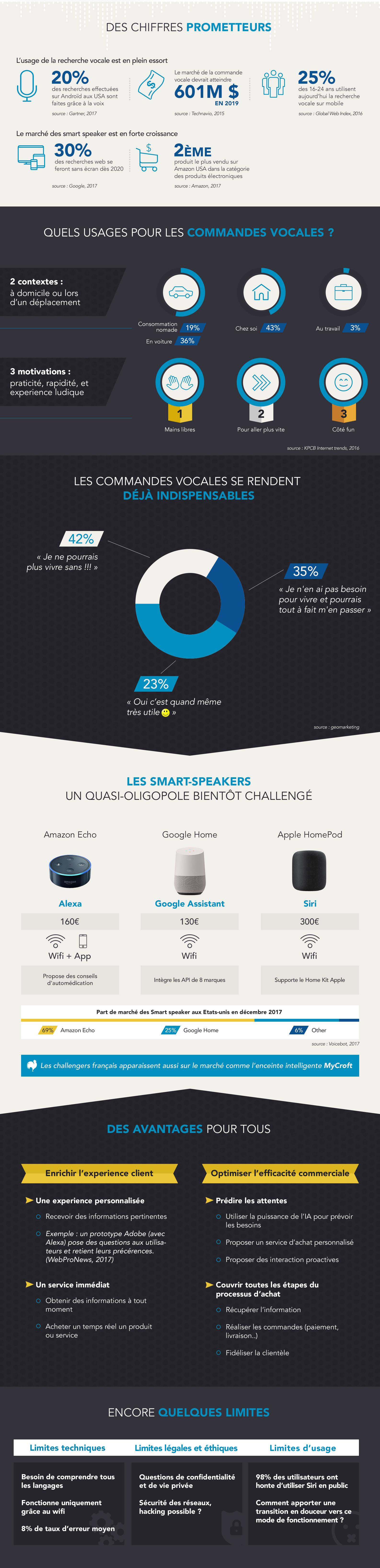 Infographie sur le voice commerce aujourd'hui: les prémices d'un nouveau marché