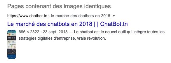 Recherche d'images Google sur une infographie Chatbot Keley inversée