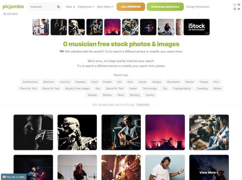 Screenshot of Picjumbo musician search results