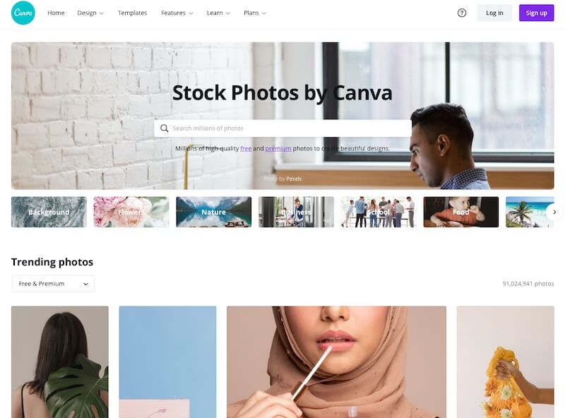 Screenshot of Canva stock photo search