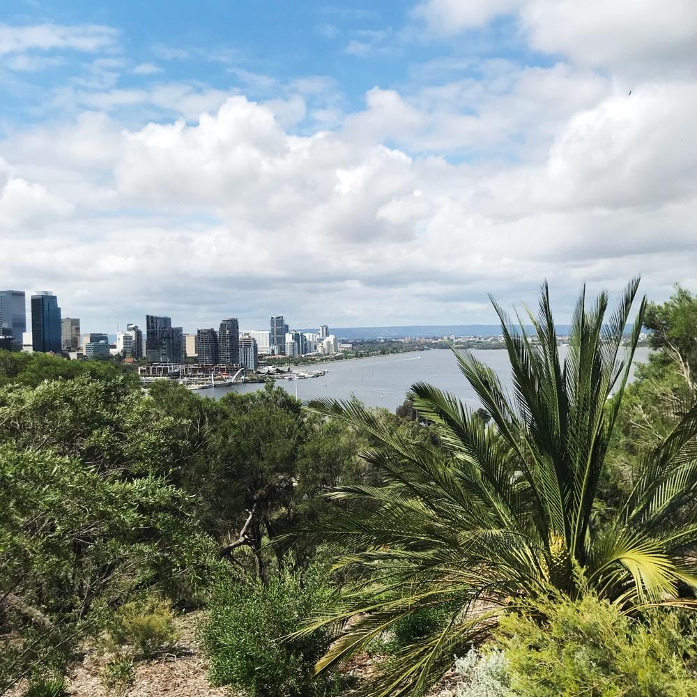 Perth Skyline | Laura Niebel | Webflow Web Designer