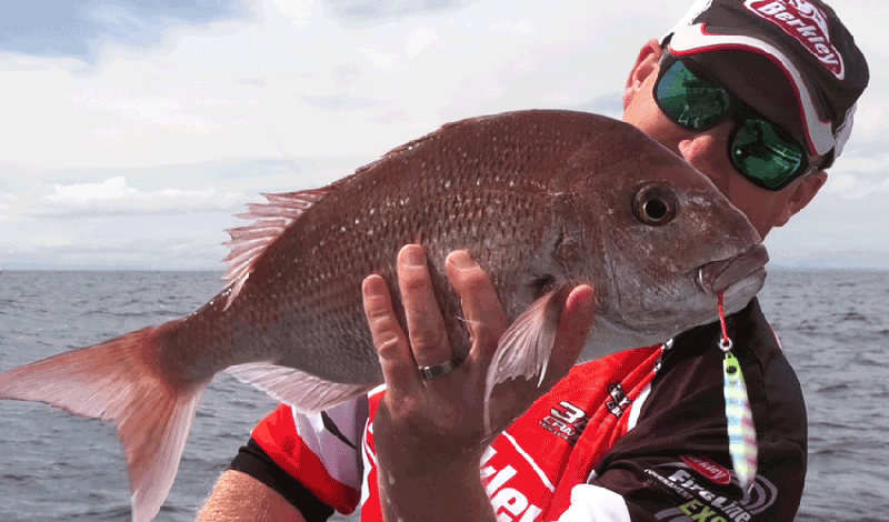 Berkley Jig-Its microjigs and how to fish them