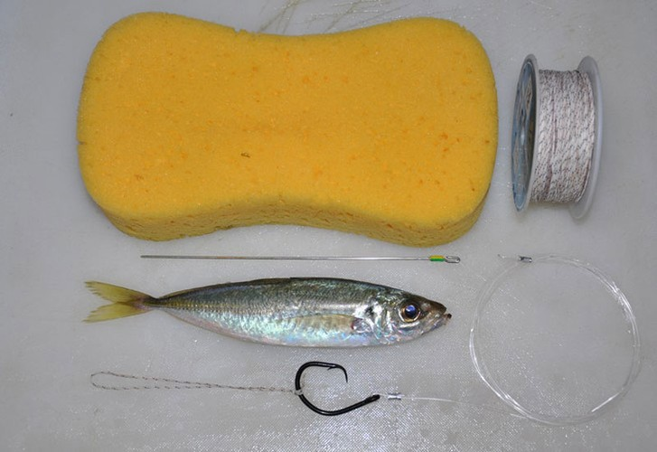 How to bridle rig live bait