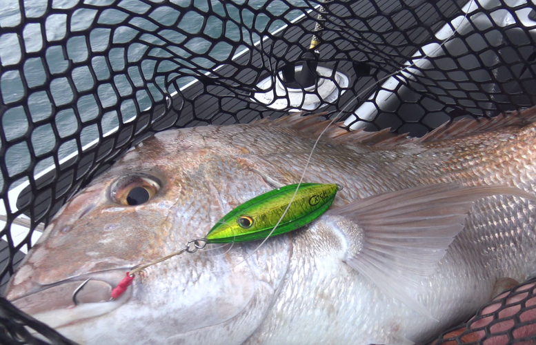 How to slow pitch jig using the Catch 'Boss'
