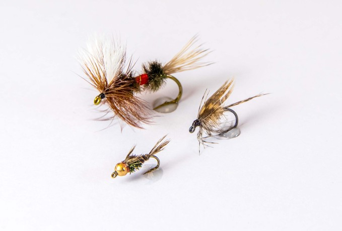 fly selection