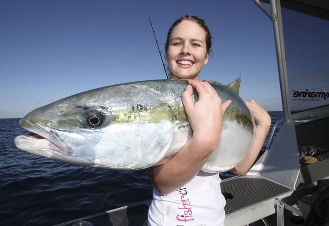 whangamata kingfish