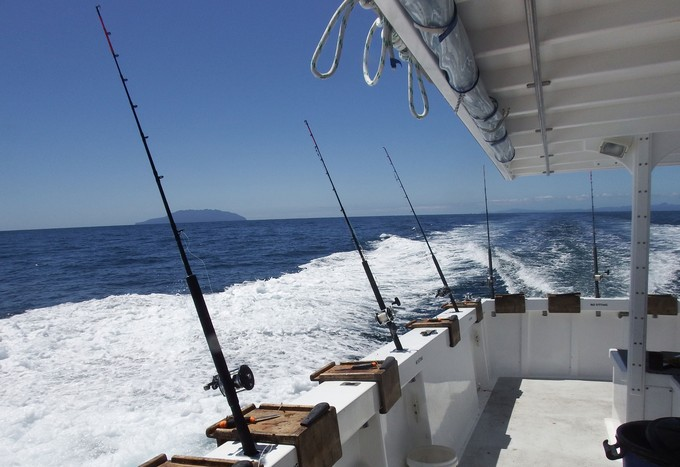 Cobalt Charters cater for groups interested in bottom fishing for snapper. The skipper works hard and doesn't mind sharing his knowledge. It is a very well set up boat with identical gear and tackle at every bait station