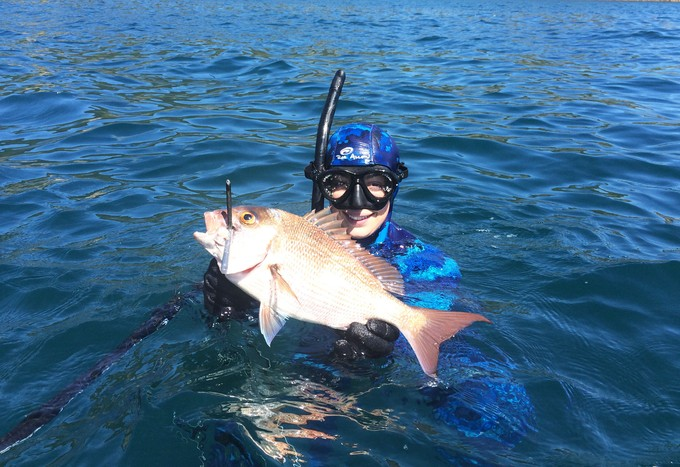 winter spearfishing, snapper