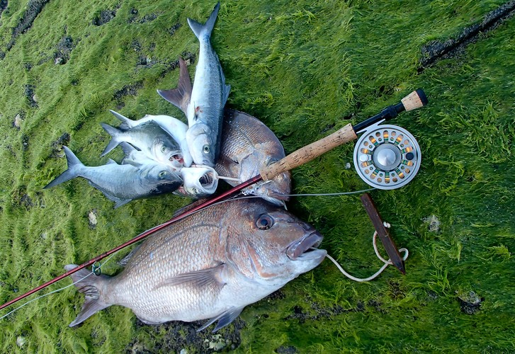 Handy hacks and fishing DIY