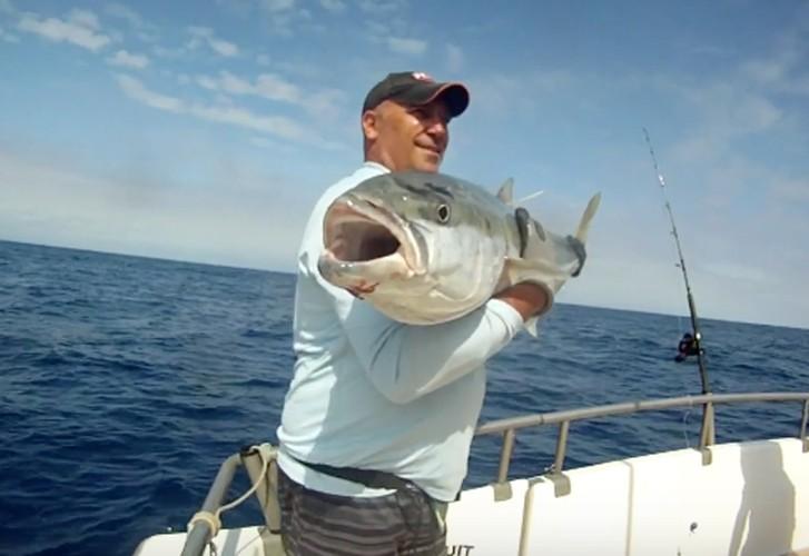 White Island kingfish aboard Pursuit