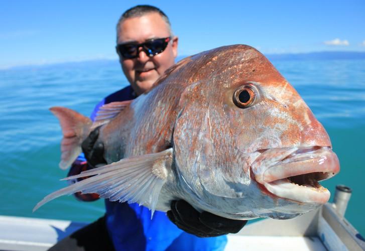 Tasman Bay top spots