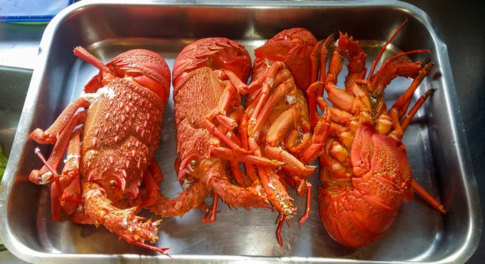 DIY Delicious - A guide to everything crayfish