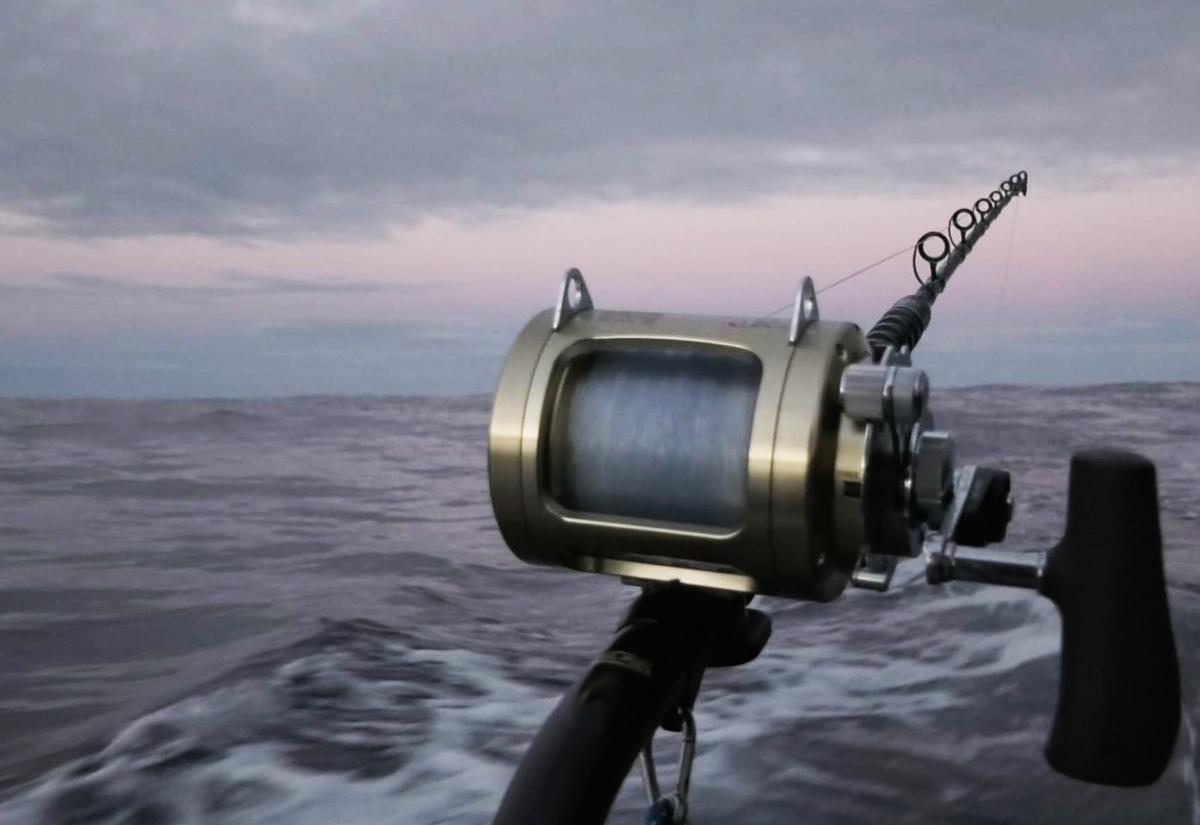 Fishing the Bay of Plenty