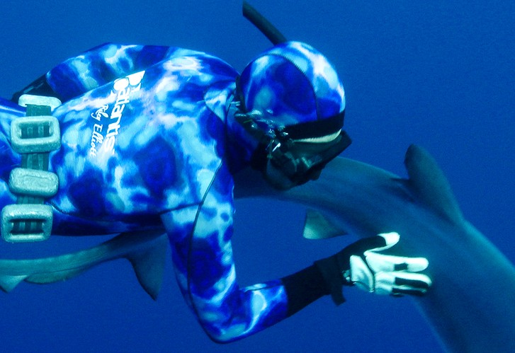 Spearfishing: Dealing with Sharks