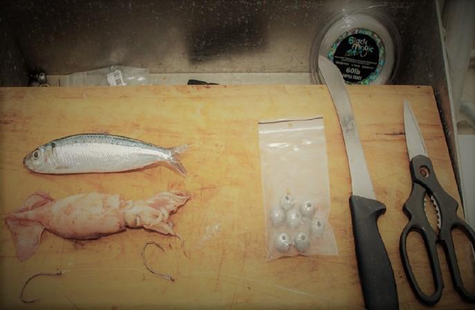 Baits to impress your mates - Pilchard / Squid Hybrid