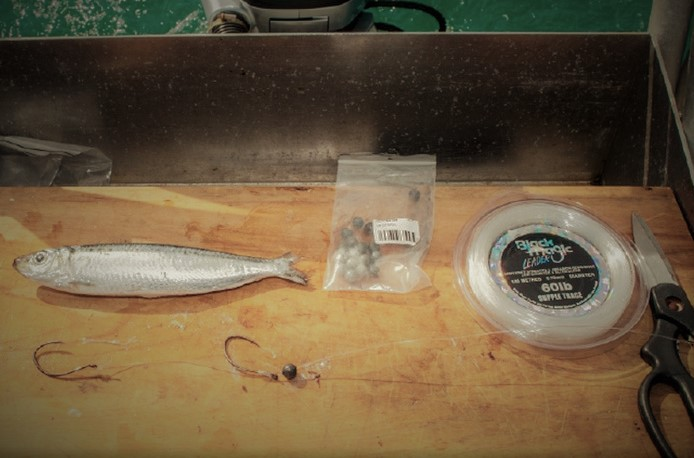 Baits to impress your mates  - Whole Pilchard