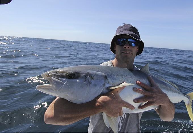 nice kingfish