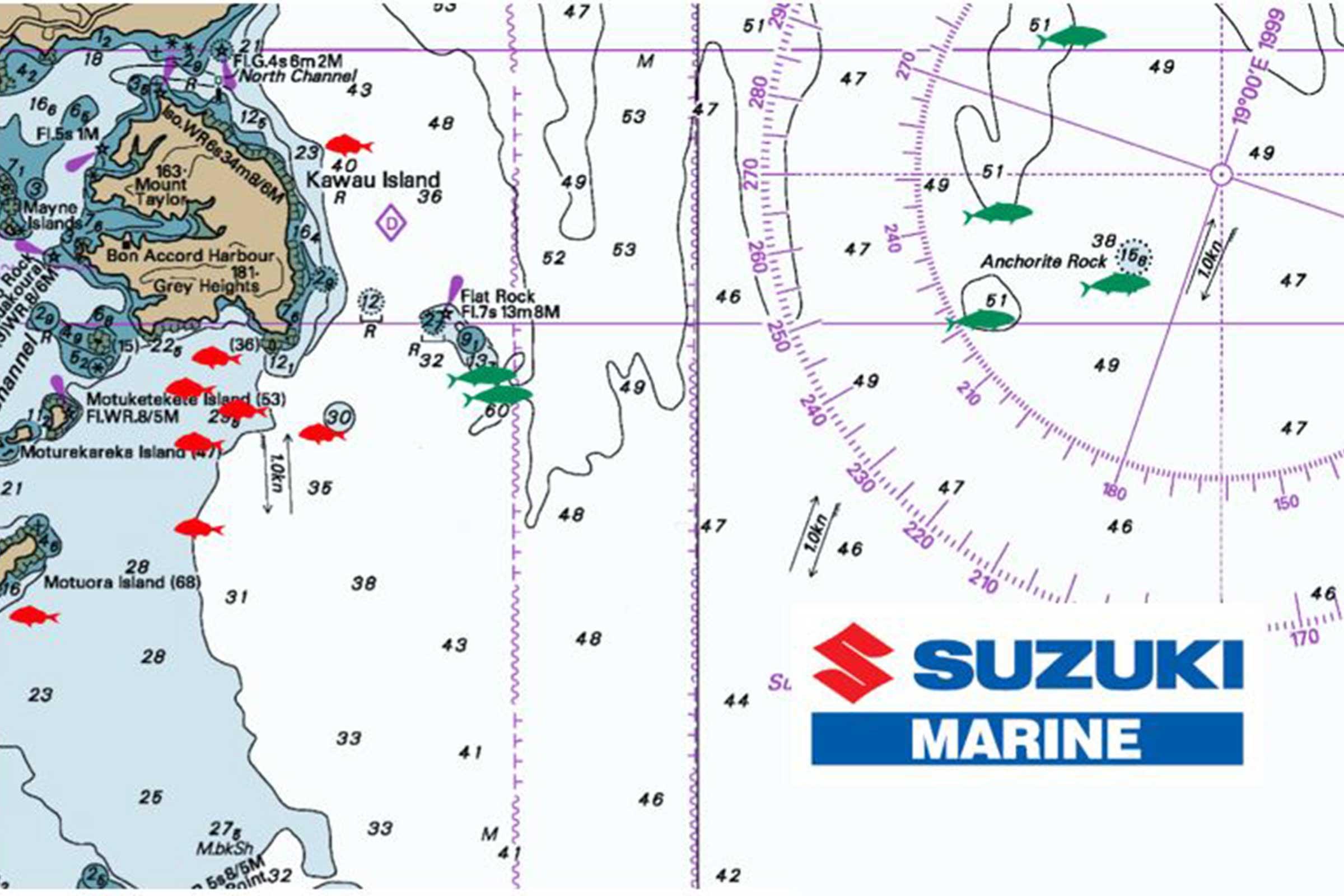 Hauraki Gulf Christmas Report