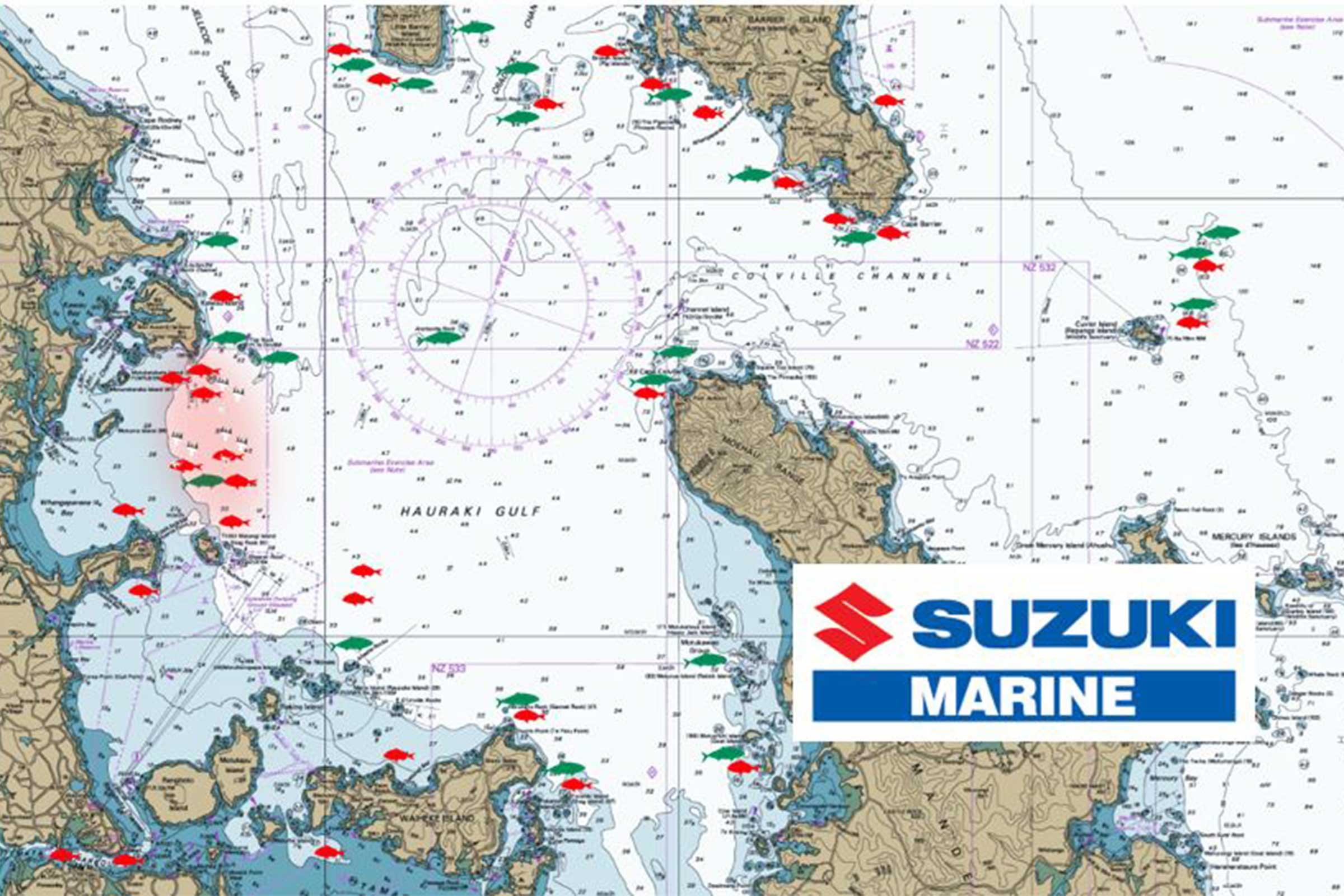 Hauraki Gulf January 2020