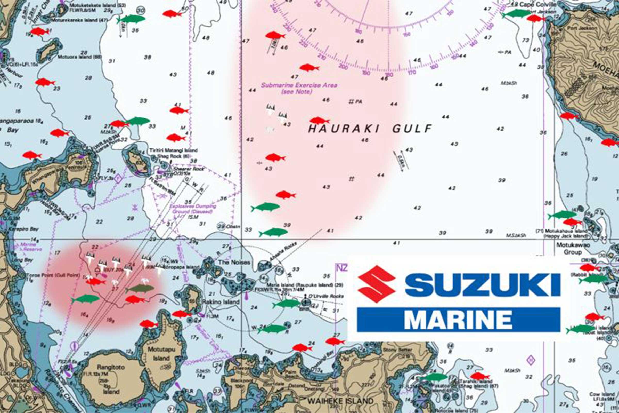 Hauraki Gulf Jan 10