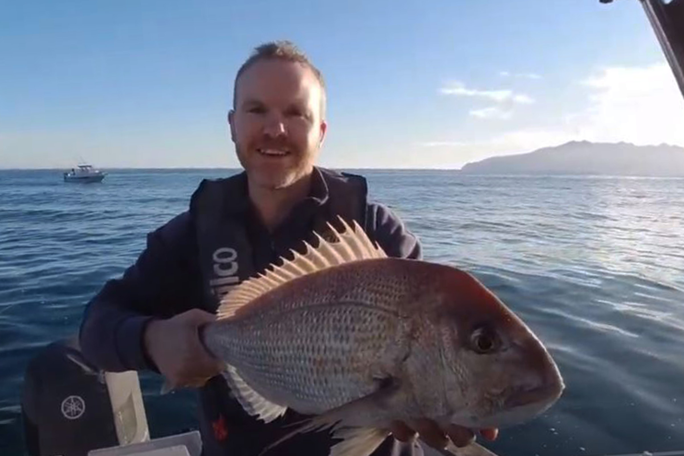 Fishing addiction - Hauraki Gulf workups