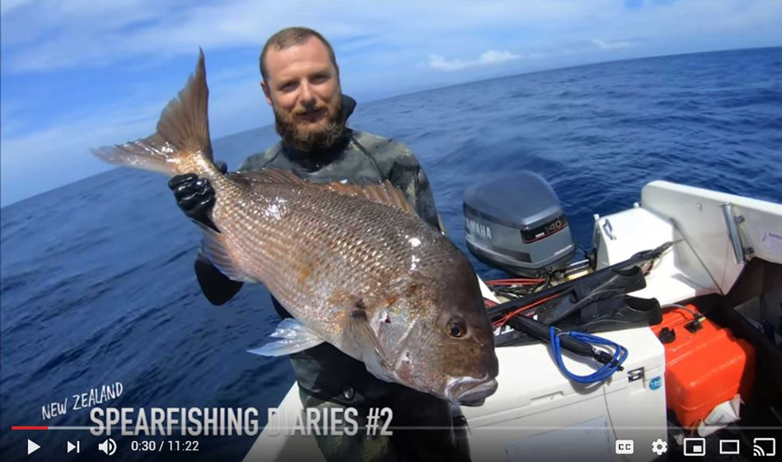 New Zealand Spearfishing Diaries: Part 2