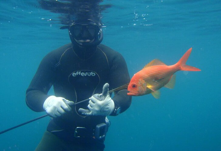 Safe spearfishing - Top tips avoid a diving disaster