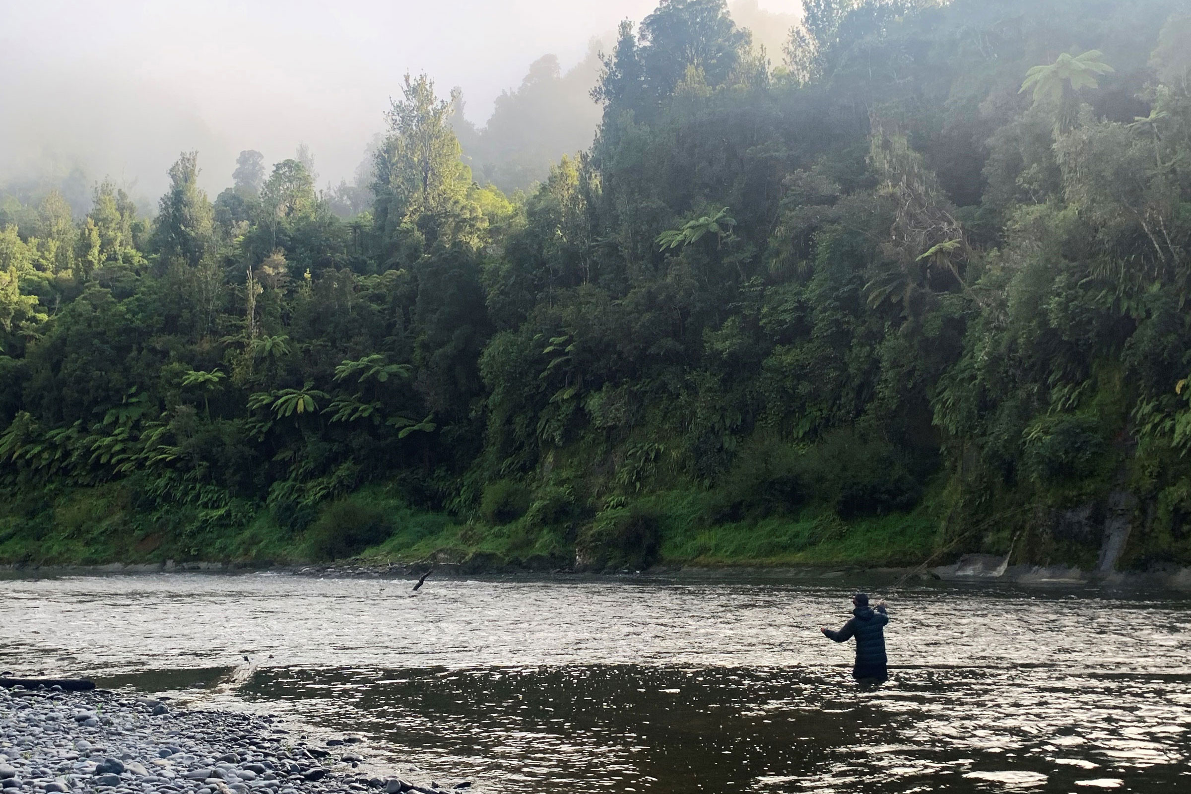 Adventure Fishing the Whanganui River