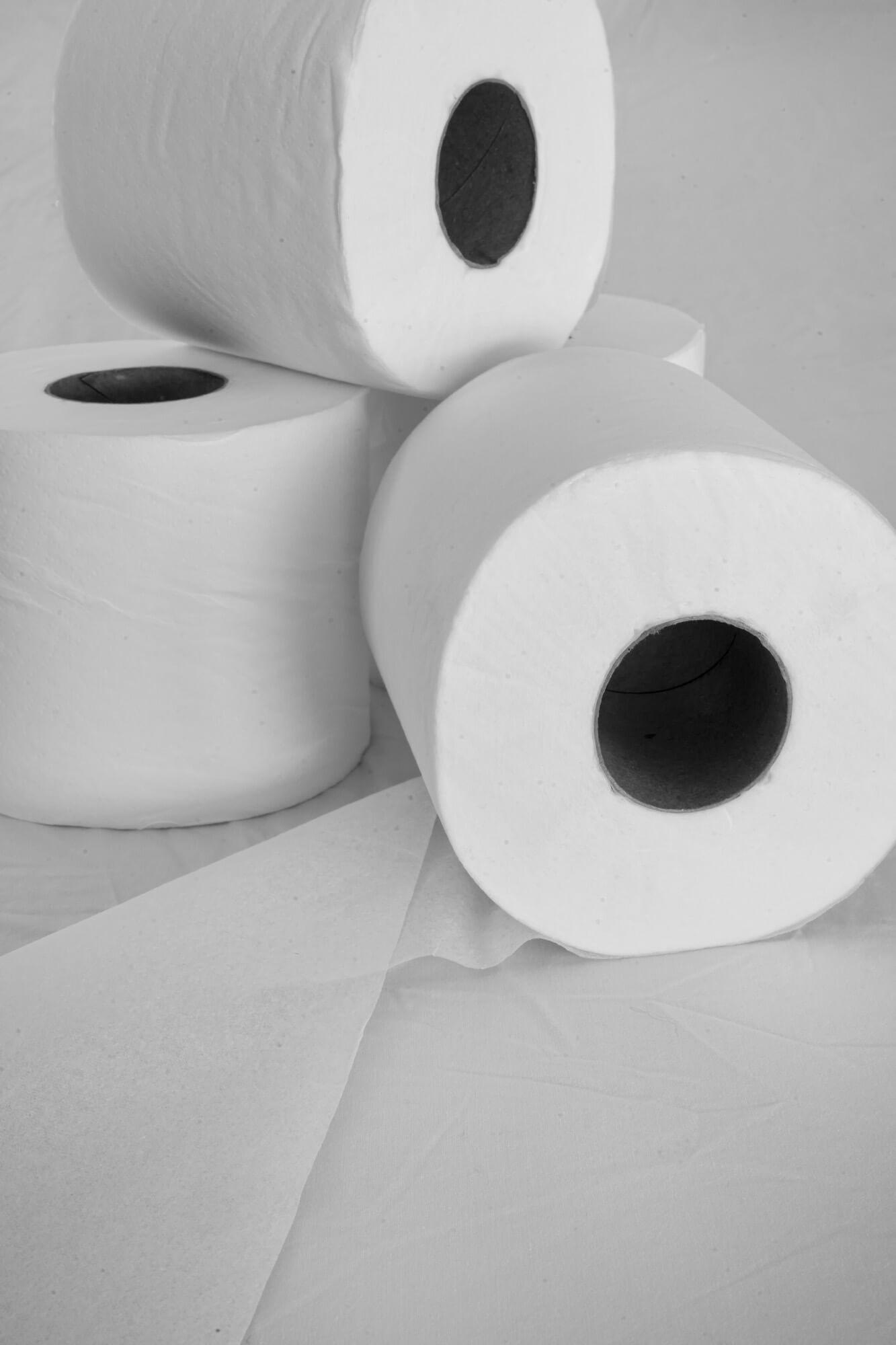 Toilet Paper Challenge #2