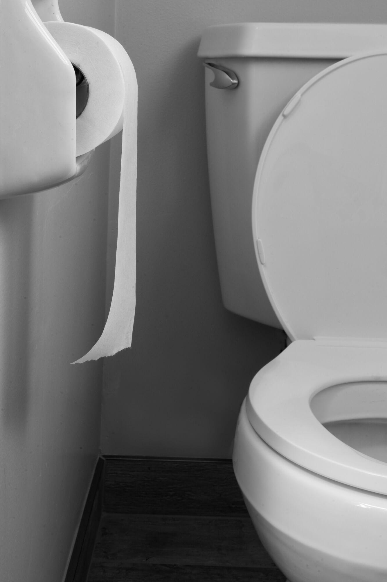 Toilet Paper Challenge #1
