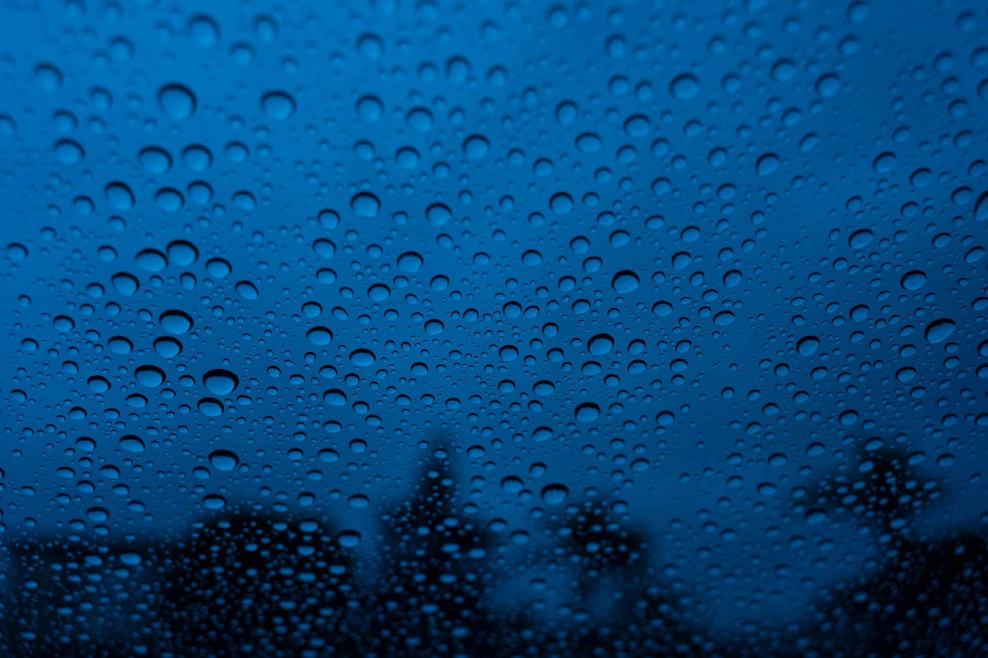 Rainy Day Window
