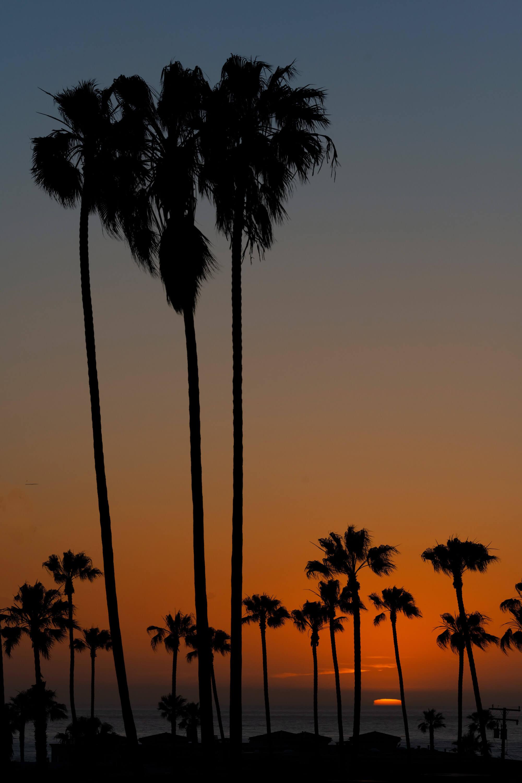 Classic California Sunset Example #1