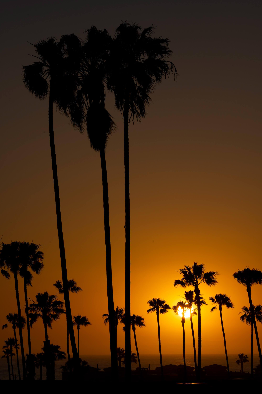 Classic California Sunset Example #2