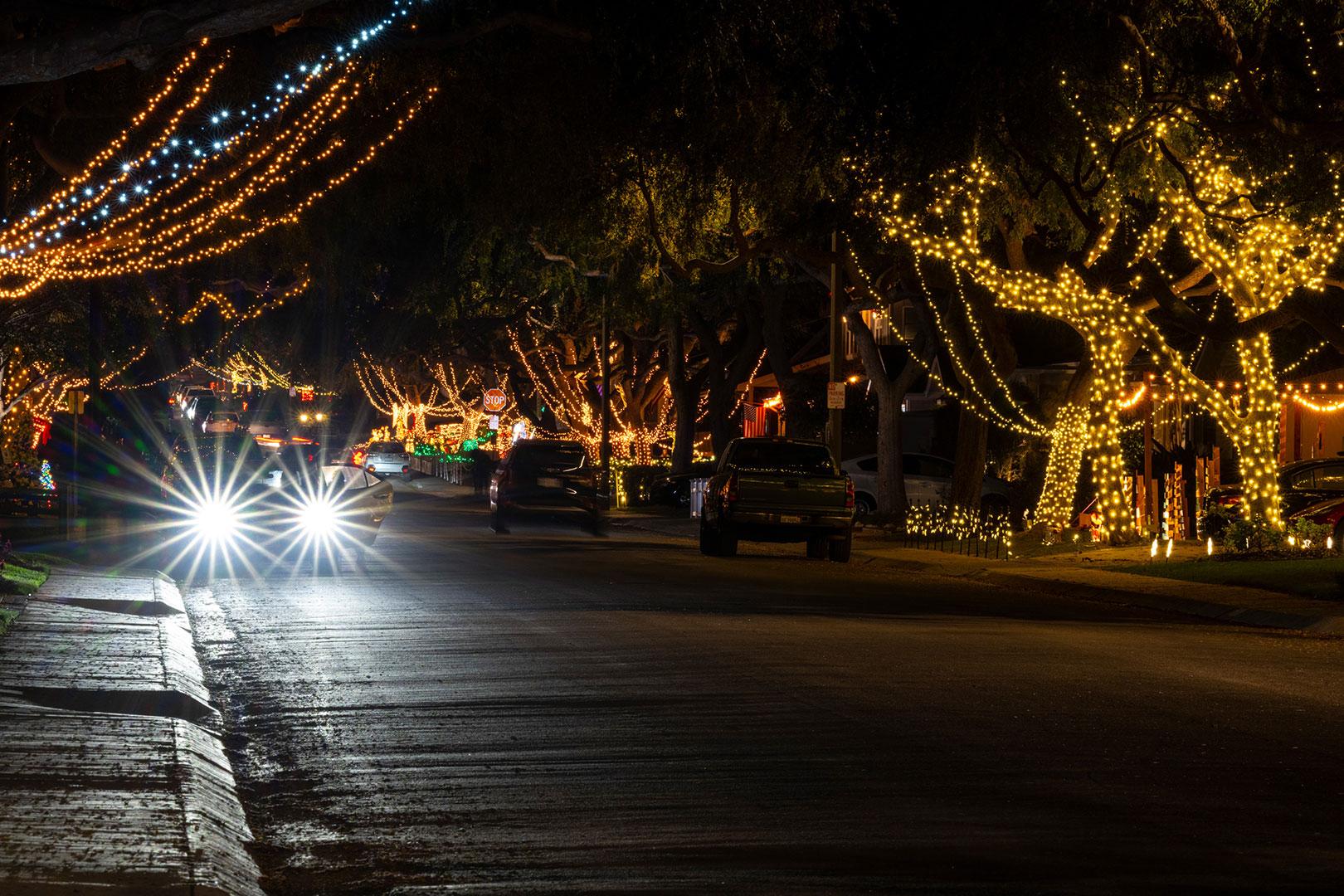 Christmas Lights Example #6
