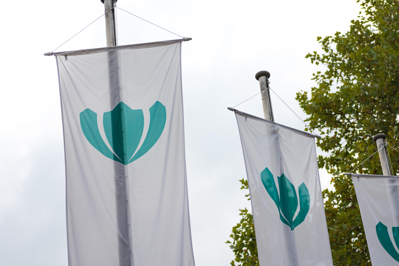 Verein Schloss Schönfeld Flaggen