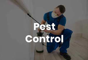 Nimbus Pest Control Services