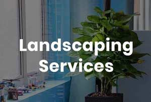 Nimbus Landscaping Services