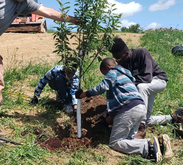 group of kids planting a tree
