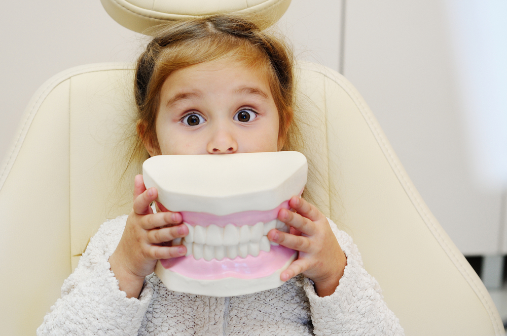 Child holding teeth model over her mouth