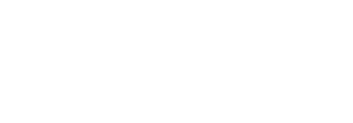 BrandNerd Logo - Websites, Web Strategy, Creative