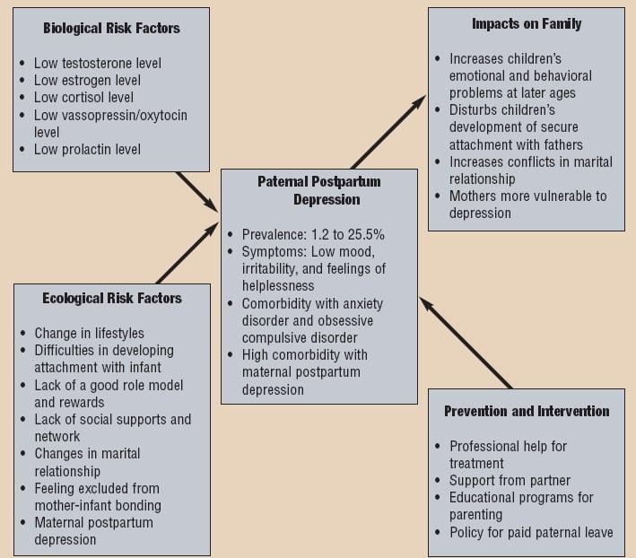 Types of risk factors relating to paternal postpartum depression.