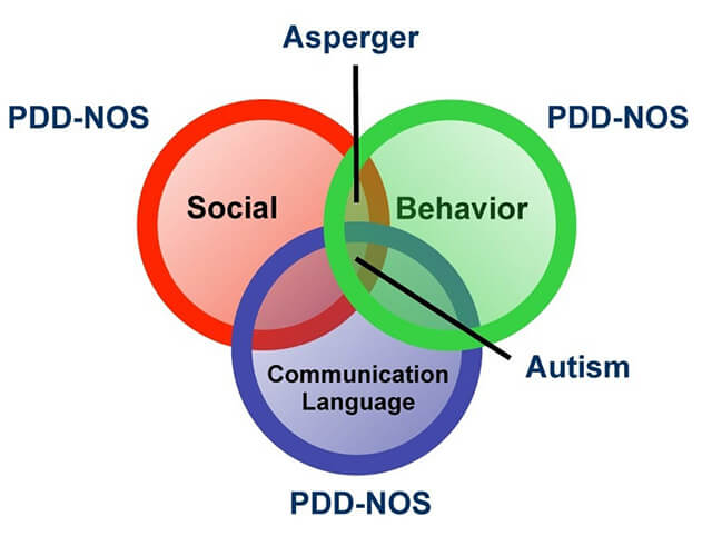 different types of autism