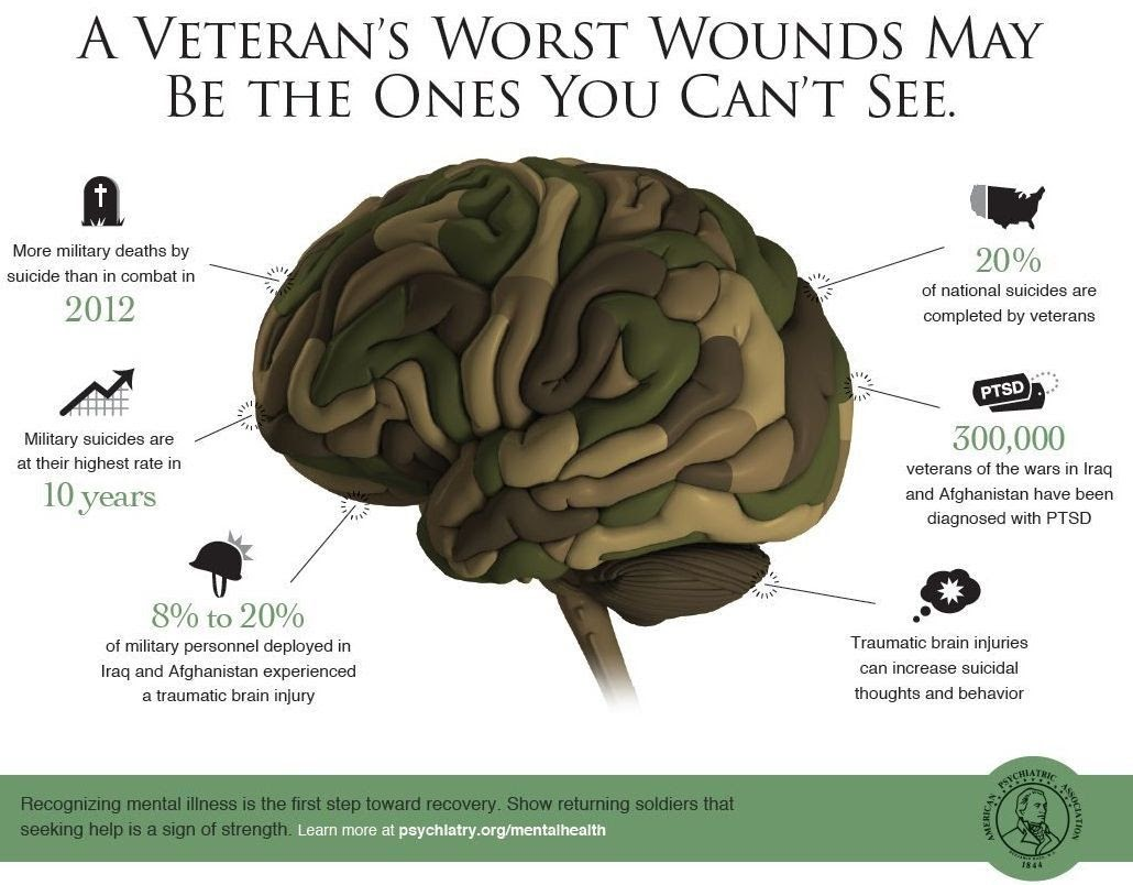 A diagram showing the statistics of veterans who struggle with their mental health.