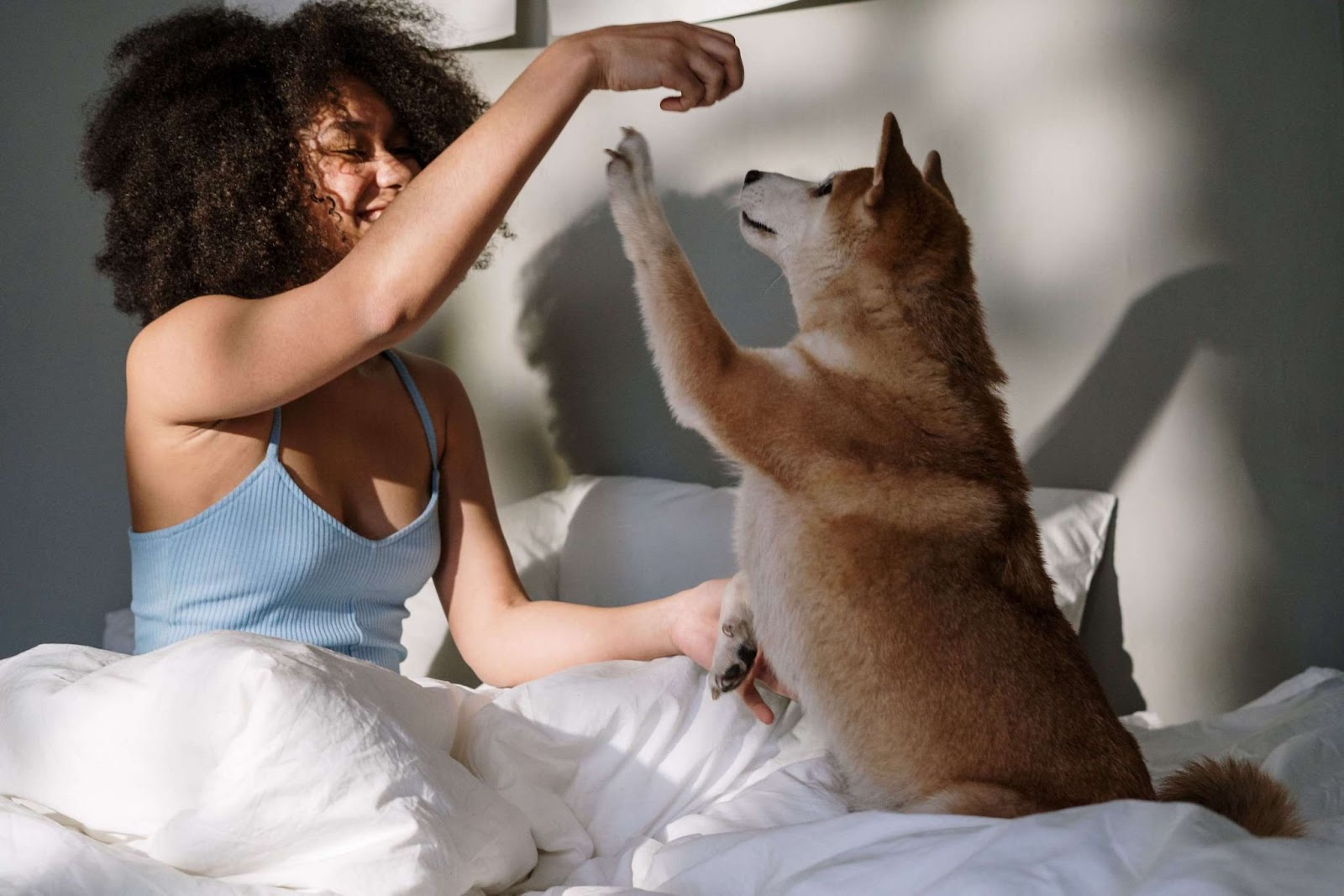 A woman and her dog playing in bed