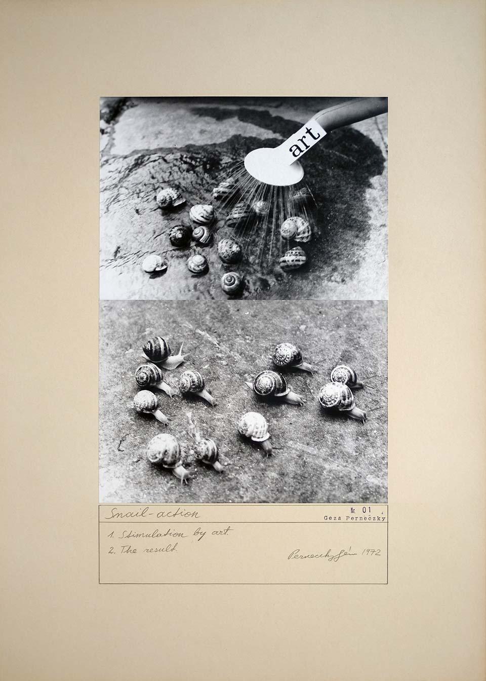 Géza Perneczky Snail Action Metropolitan Museum collection
