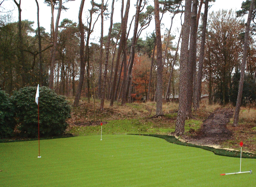 HyperGrass Golf At Home