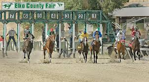 Picture of Elko County Horse Races