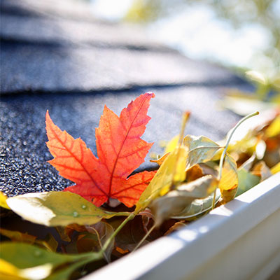 Gutter cleaning in Ashburn, VA